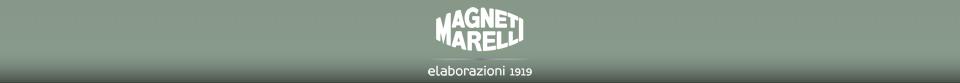 Magneti Marelli Elaborazioni